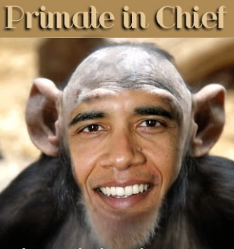 obama-face-on-chimp1.jpg